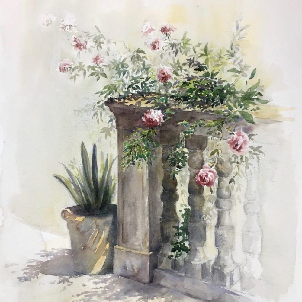 DISPONIBLE rosal-mdmrobert-watercolor-acuarela